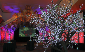 Red Pebble Events