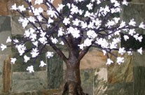 Bonsai Blossom Tree 175